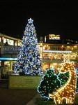 Christmas TreeiAXij.jpg