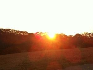sunset�A 12-7-11.JPG
